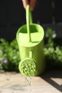 400px-Watering-can-green