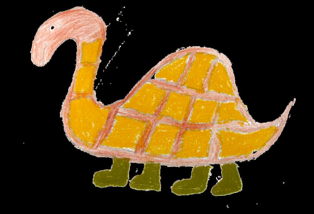 Tortoise_wakkere_oogjes_transparant_IMG_5092_1000px
